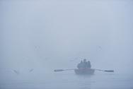 Boat in the mist at dawn on the Ganges River, Varanasi, Uttar Pradesh, India