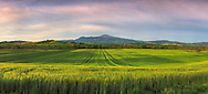 A glorious sunrise over the crop fields of the Orcia Valley, and the beautiful cone of the mount Amiata, the largest and highest quiescient volcano of Italy. Taken at dawn in the fields between Pienza and San Quirico d'Orcia, on a windy morning at the end of April, this is stitche from nine vertical frames.