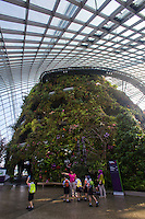 """Singapore's Gardens by the Bay """"Cloud Forest"""" dome is an artificial arboretum with rare plants, diverse vegetation, veiled in mist.  The Cloud Forest even has its own man-made waterfall, in fact it is the world's tallest indoor waterfall.   The Cloud Forest was designed  for people to learn about  biodiversity and the geology of cloud forests within the various  zones in this cool and moist conservatory."""