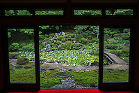 """Kozenji Garden Tottori - while many temples around Japan share the name Kozenji, the Tottori Kozenji features a small landscape garden using """"borrowed scenery"""" - that is hills and forest behind the garden incorporated into the garden's tableaux."""