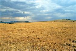 Masai Mara National Reserve Sign
