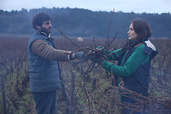 RELEASE DATE: June 14, 2017 TITLE: Back To Burgundy STUDIO: StudioCanal DIRECTOR: Cedric Klapisch PLOT: After a 10 year absence, Jean returns to his hometown when his father falls ill. Reuniting with his sister Juliette and his brother Jeremie, they have to re-build their relationship and trust as a family again. STARRING: Pio Marmai, Ana Girardot, Francois Civil. (Credit Image: ? Columbia Pictures/Entertainment Pictures/ZUMAPRESS.com)