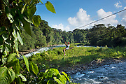 Starting from a high point in the jungle canopy a tourist zips over the Sarapiqui River in Costa Rica.  Zip lining has become one of the most popular tourist activities in Costa Rica.