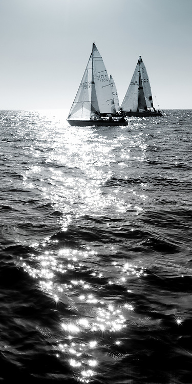 Sailboats against the sun. Black and white vertical photo