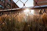 High Line Spring Cutback 2019