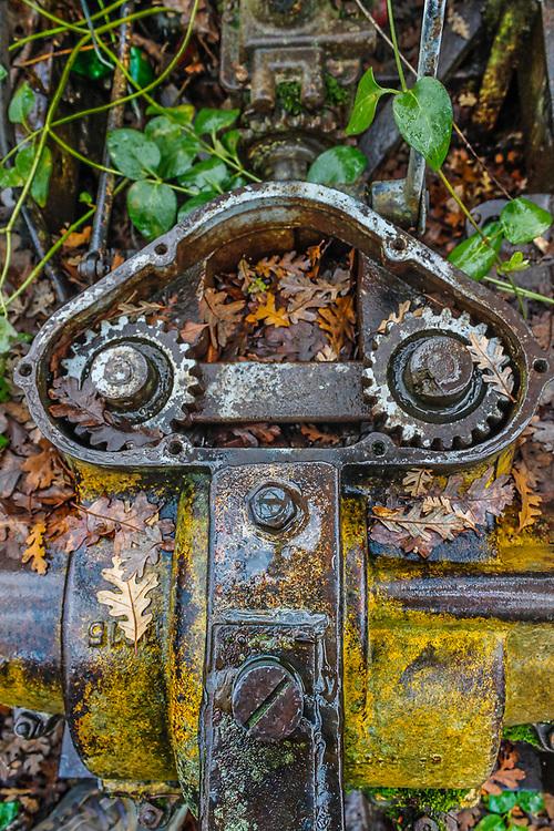 Old tractor, autumn, Contra Costa County, California, USA
