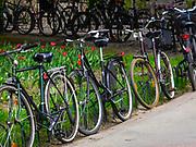 Rowery przed budynkiem Collegium Novum, krakowskie Planty, Polska<br /> Bicycles in front of the Collegium Novum, Cracow Planty, Poland