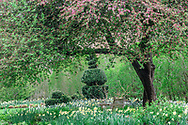 Bridge Gardens, Bridgehampton, NY