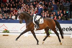 Van Liere Dinja, NED, Hermes<br /> KWPN Stallionshow - 's Hertogenbosch 2018<br /> © Hippo Foto - Dirk Caremans<br /> 02/02/2018