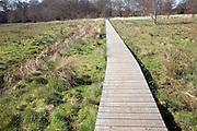"A wooden boardwalk across wet marshy field forming an art work ""High Water Mark 2048"" by Jonathan Keep, Snape, Suffolk"