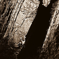 Rock Climber on Quartzite