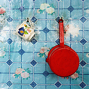 A china cup and an enamel saucepan hang on a piece of vinyl wallpaper in the kitchen of a sheepfold in Lunca Ilvei, Romania.  Each flock of around 500 sheep is based at a stana or sheepfold, a very basic hut in a clearing with a strunga or milking enclosure of hurdles which is moved every few weeks in good weather or weekly in bad.