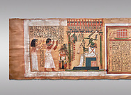 Ancient Egyptian Book of the Dead papyrus - From  tomb of Kha & Merit, Theban Tomb 8 , mid-18th dynasty (1550 to 1292 BC), Turin Egyptian Museum.  Grey background .<br /> <br /> If you prefer to buy from our ALAMY PHOTO LIBRARY  Collection visit : https://www.alamy.com/portfolio/paul-williams-funkystock/ancient-egyptian-art-artefacts.html  . Type -   Turin   - into the LOWER SEARCH WITHIN GALLERY box. Refine search by adding background colour, subject etc<br /> <br /> Visit our ANCIENT WORLD PHOTO COLLECTIONS for more photos to download or buy as wall art prints https://funkystock.photoshelter.com/gallery-collection/Ancient-World-Art-Antiquities-Historic-Sites-Pictures-Images-of/C00006u26yqSkDOM
