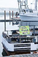 Yaquina Bay Harbor. Newport, OR.