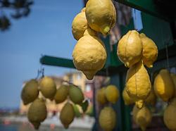THEMENBILD - Zitronen hängen an einem Verkaufsstand, aufgenommen am 28. Juli 2018, Sirmione, Italien // Lemons are hanging on a stall on 2018/07/28, Sirmione, Italy. EXPA Pictures © 2018, PhotoCredit: EXPA/ Stefanie Oberhauser