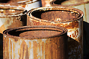 Rusty Cans in garden