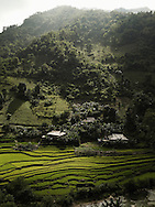 Mountainous landscape with stilt houses hanging on relief. Jungle mostly covers mountains. Paddy fields with rice plantation is a vital component in subsistence of local people. Ha Giang province, Vietnam, Asia