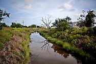 Bayou on Isle de Jean Charles in Terribone Parish Louisana.