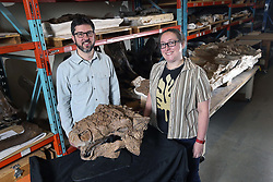 May 9, 2017 - Toronto, ON, Canada - TORONTO, ON - MAY 9  -  David Evans, the curator of vertebrate palaeontology at the Royal Ontario Museum and Victoria Arbour, a postdoctoral fellow at the ROM, pose with Zuul crurivastator, a discovered new species of armoured dinosaur, named after a creature from Ghostbusters, May 9, 2017...***EMBARGOED UNTIL Tues May 9, 7:01pm Andrew Francis Wallace/Toronto Star (Credit Image: © Andrew Francis Wallace/The Toronto Star via ZUMA Wire)