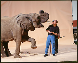 Morgan Howarth with elephant on sweep