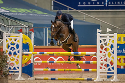 Vinckx Wim, BEL, Quirinus van't Ravennest<br /> Pavo Hengsten competitie - Oudsbergen 2021<br /> © Hippo Foto - Dirk Caremans<br />  22/02/2021