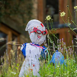 Villagers in Burton, Wiltshire get creative during the coronavirus lockdown by making a scarecrow trial. Thirteen scarecrows in total June2020