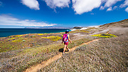 Hiker on the Skunk Point trail, Santa Rosa Island, Channel Islands National Park, California USA