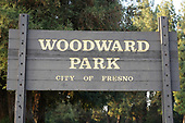Cross Country-Woodward Park-Oct 31, 2020