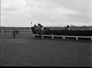 """Powers Gold Cup At Fairyhouse..1986..01.04.1986..04.01.1986..1st April 1986..""""Bartres"""", owned by Mr John Purfield,.won the Powers Gold Cup at Fairyhouse racecourse today.The winning jockey was Mr T Morgan and the horse was trained by Mr Des Hughes. Fairyhouse is in Co Meath near the village of Ratoath...Picture shows """"Bartres"""",The eventual winner being led over the last fence by No.,6, """"Kilnantogue"""""""