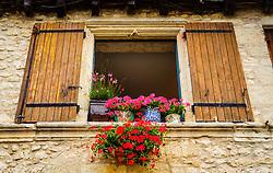 Flowers in Eymet, France<br /> <br /> (c) Andrew Wilson | Edinburgh Elite media