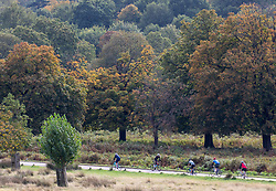 © Licensed to London News Pictures. 05/10/2020. London, UK. Cyclists enjoy the mild temperatures and autumnal colours in Richmond Park today after Storm Alex lashed the UK with 3 days of rain. Weather forecasters predict sunshine and showers with a high of 16c for the rest of the week. Photo credit: Alex Lentati/LNP