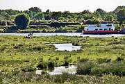Nederland, Sambeek, 28-5-2020 Repo over het sturen van het waterpeil in de Maas dmv de stuwen . Het peil in de rivier wordt 10 centimeter hoger gehouden als normaal. Hiermee probeert rijkswaterstaat de gevolgen van de droogte in het stroomgebied wat op te compenseren . Uiterwaarden bij Afferden waar de Eckeltsche Beek uitstroomt.Foto: Flip Franssen