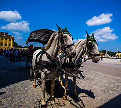 July 3, 2018 - Vienna, Vienna, China - Vienna, Austria- Schönbrunn Palace is a former imperial summer residence located in Vienna, Austria. The 1,441-room Baroque palace is one of the most important architectural, cultural, and historical monuments in the country. Since the mid-1950s it has been a major tourist attraction. The history of the palace and its vast gardens spans over 300 years, reflecting the changing tastes, interests, and aspirations of successive Habsburg monarchs. (Credit Image: © SIPA Asia via ZUMA Wire)