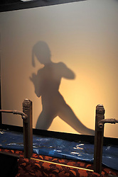 A silhouette of MEREDITH OSTROM painting at a reception to celebrate the launch of Liberatum's Russian Anglo Arts Festival (Anglomockba)  held at Sketch, London on 27th April 2009.