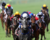 A beautifully formed shape of horses pale into the distance as Michael Rodd guides Efficient to win the 2007 Melbourne Cup at Flemington Racecourse. (Copyright Michael Dodge/Herald Sun)