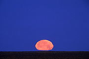 Image of full moon setting in the desert landscape of New Mexico, American Southwest by Randy Wells