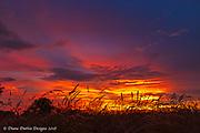 20180702_sunset_after_storm_diane_duthie_designs_
