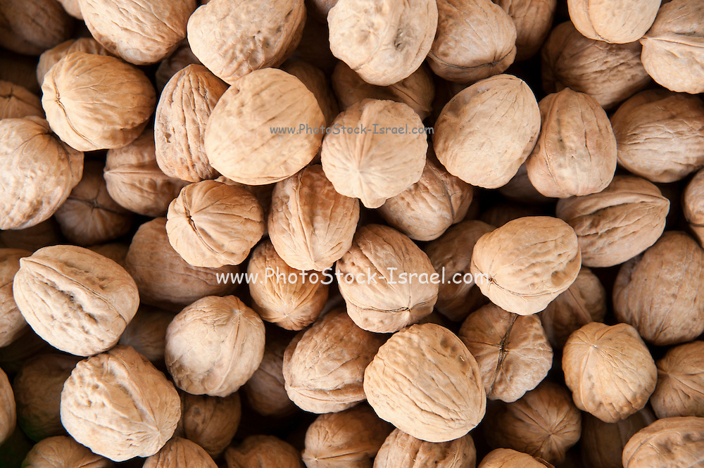 A pile of freshly roasted unshelled walnuts
