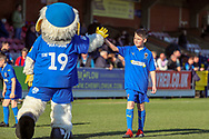 Haydon the Womble hgih fiving the Mascot during the EFL Sky Bet League 1 match between AFC Wimbledon and Charlton Athletic at the Cherry Red Records Stadium, Kingston, England on 23 February 2019.