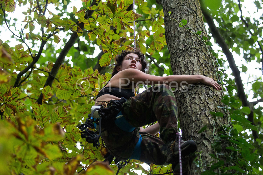 A HS2 Rebellion tree protector climbs a mature tree in Denham Country Park in order to try to prevent its felling as part of works for the HS2 high-speed rail link on 7 September 2020 in Denham, United Kingdom. Anti-HS2 activists continue to try to prevent or delay works on the controversial £106bn project for which the construction phase was announced on 4th September from a series of protection camps based along the route of the line between London and Birmingham.