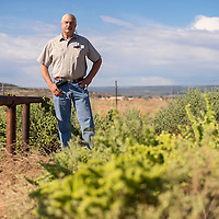080913       Brian Leddy<br /> John Boomer stands on his property in Milan that is contaminated with uranium from the nearby Homestake-Barrick Gold tailings pile.  The Environmental Protection Agency has released two different maps of the property that show different levels of contamination.