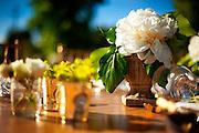 Alana Aldag and Peter Ackerson wedding in Napa.