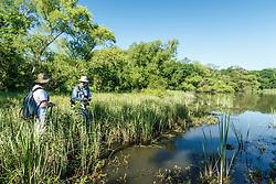 Remote pond, Great Trinity Forest, Dallas, Texas, USA
