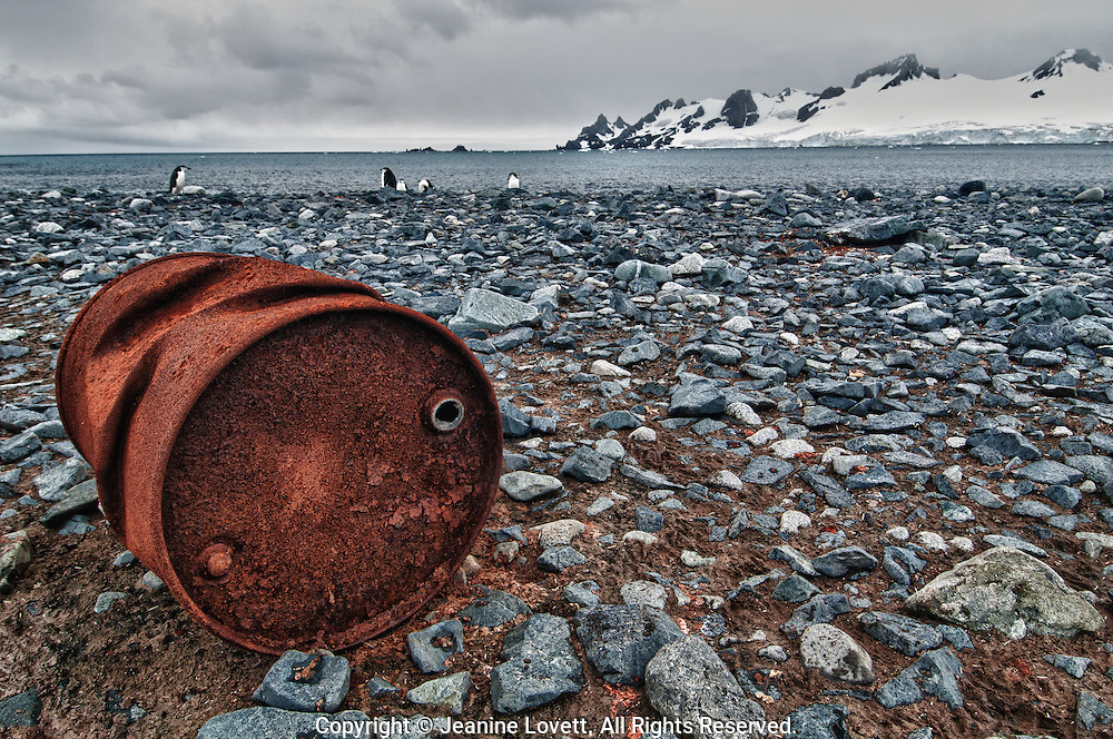 A rusted oil can left behind by man, perhaps washed up on shores of the Antarctic Peninsula.