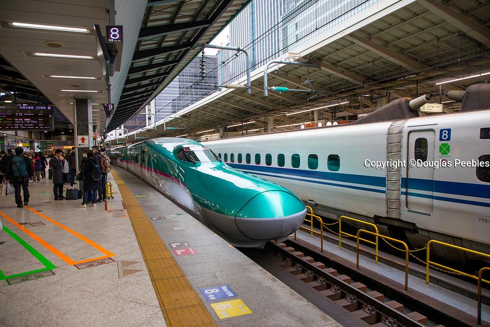 Tokyo Train Station, Bullet Train, Tokyo, Japan