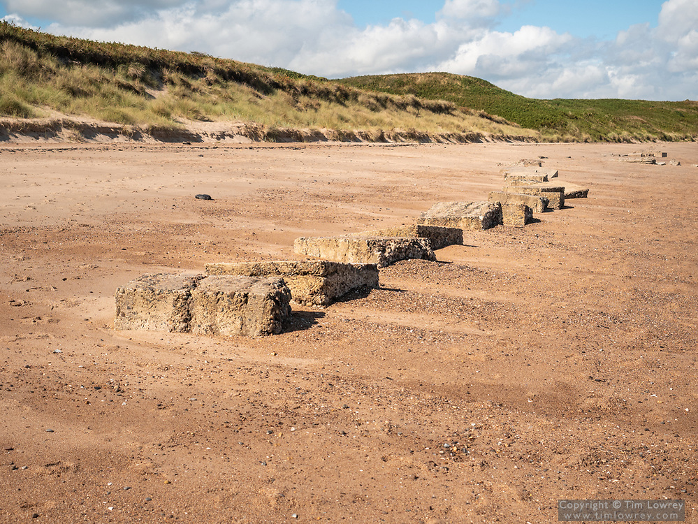 British WWII Concrete Anti Tank Defenses Exposed In The Sand On Warkworth Beach, Northumberland