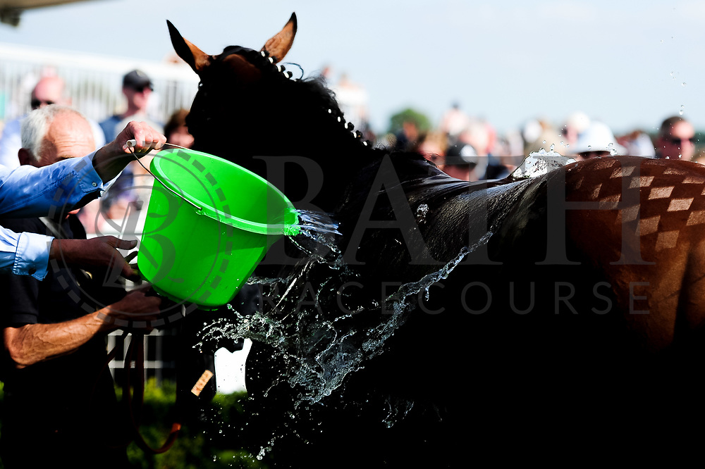 Orange Suit ridden by Marco Ghiani and trained by Ed de Giles in the Winning Post Bookmakers Bristol Handicap race.  - Ryan Hiscott/JMP - 15/09/2019 - PR - Bath Racecourse - Bath, England - Race Meeting at Bath Racecourse