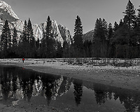 Michael walking along the Merced River. Yosemite Valley in the Winter. Yosemite National Park. Image taken with a Nikon D3x camera and 14-24 mm f/2.8 lens.