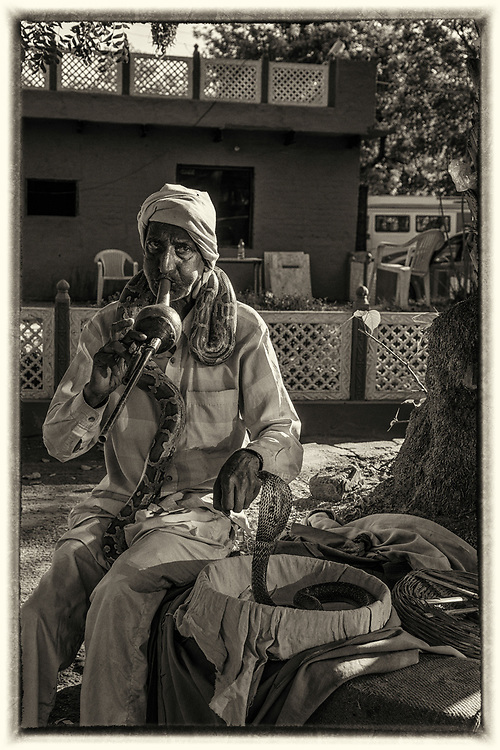 A snake charmer  in Agra, India. Snake charming is the practice of pretending to hypnotize a snake by playing an instrument called pungi or bansuri.
