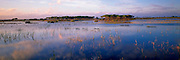 SPAIN, ANDALUSIA La Doñana on Guadalquivir River